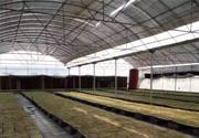 HDPE温室用平织遮阳网