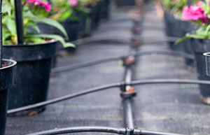 花木市场用园艺地布 防草布